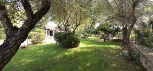 Porto San Paolo - Trifamiliare con giardino