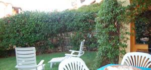 Porto San Paolo - Trilocale con giardino